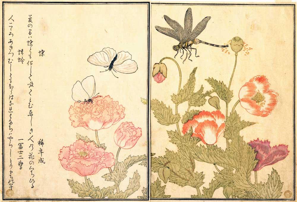 喜多川歌麿の浮世絵