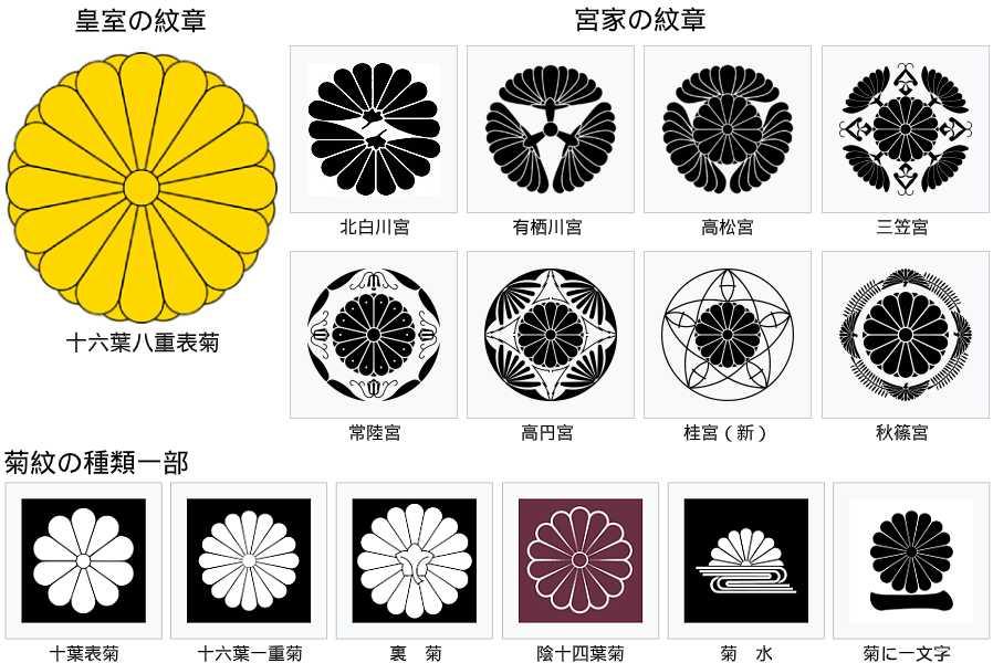 菊の家紋、図案